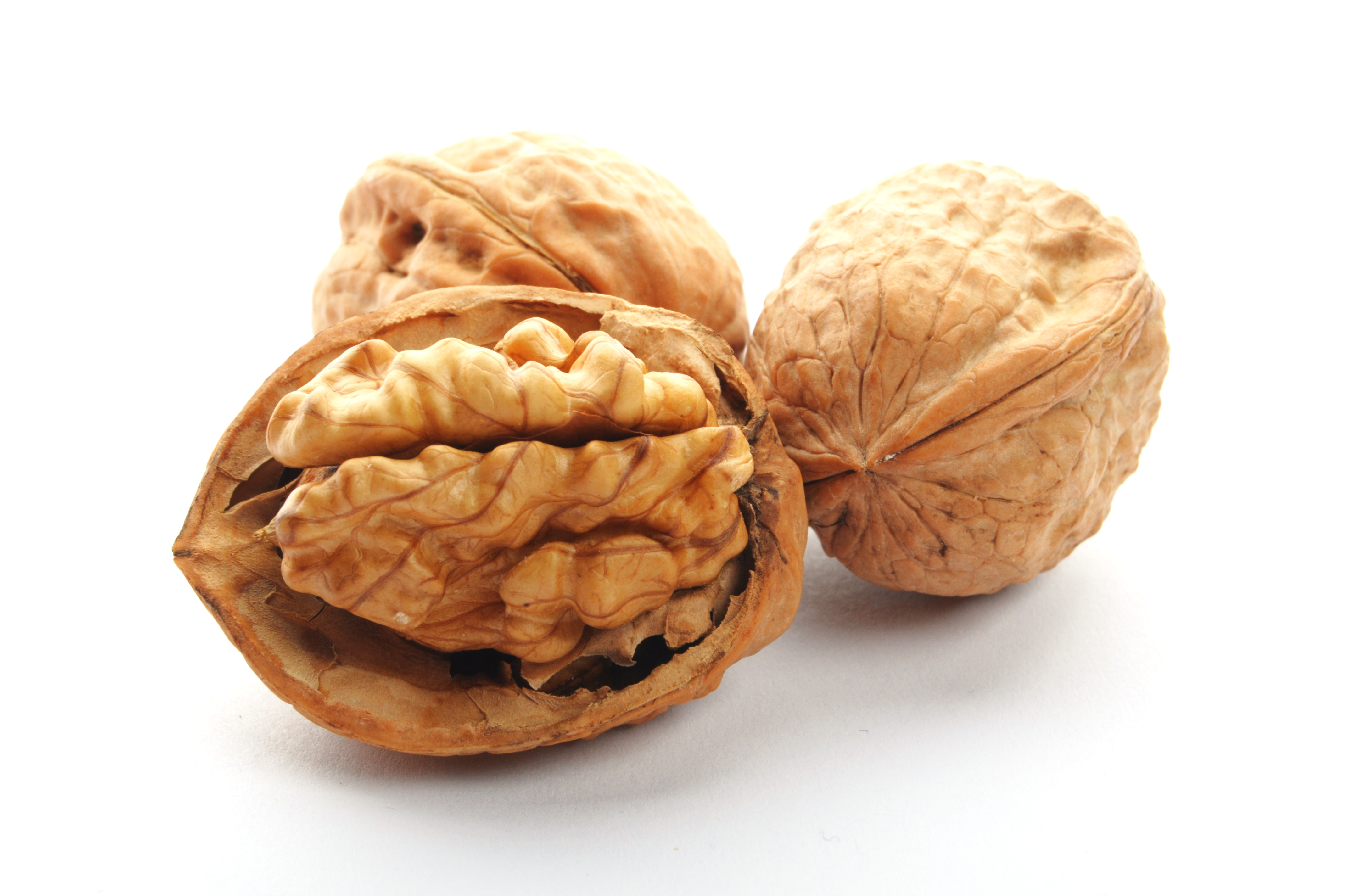 closeup of a walnut